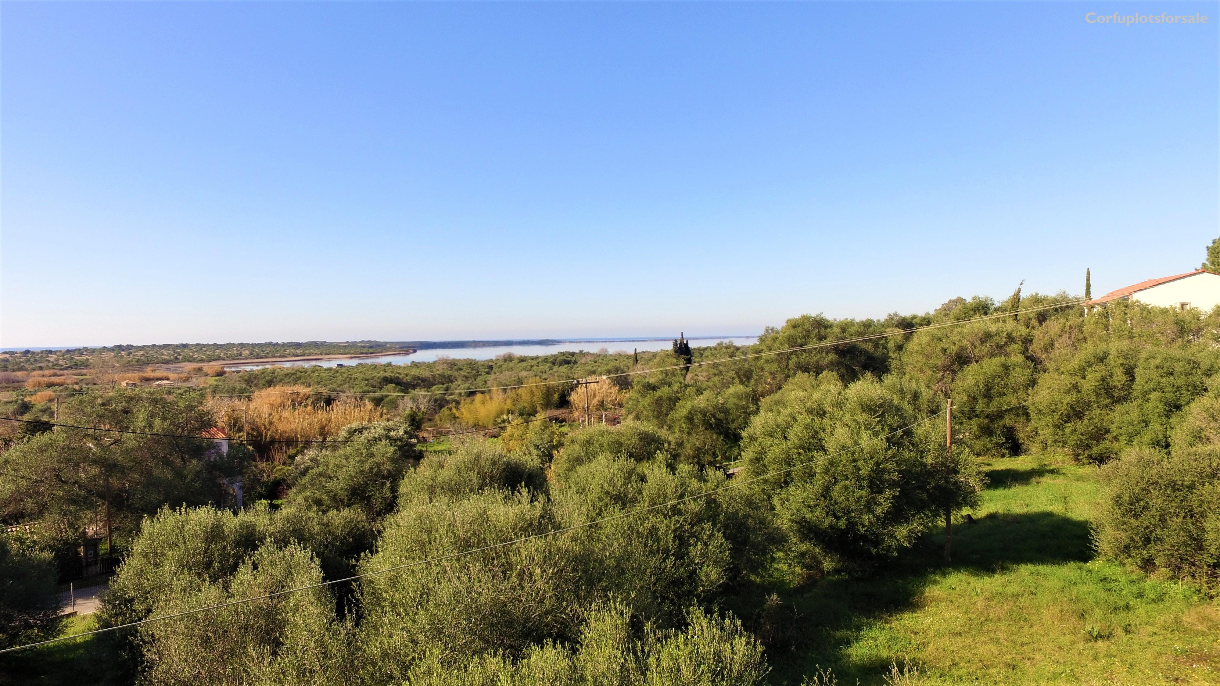 Beautiful full of green plot near Issos Beach