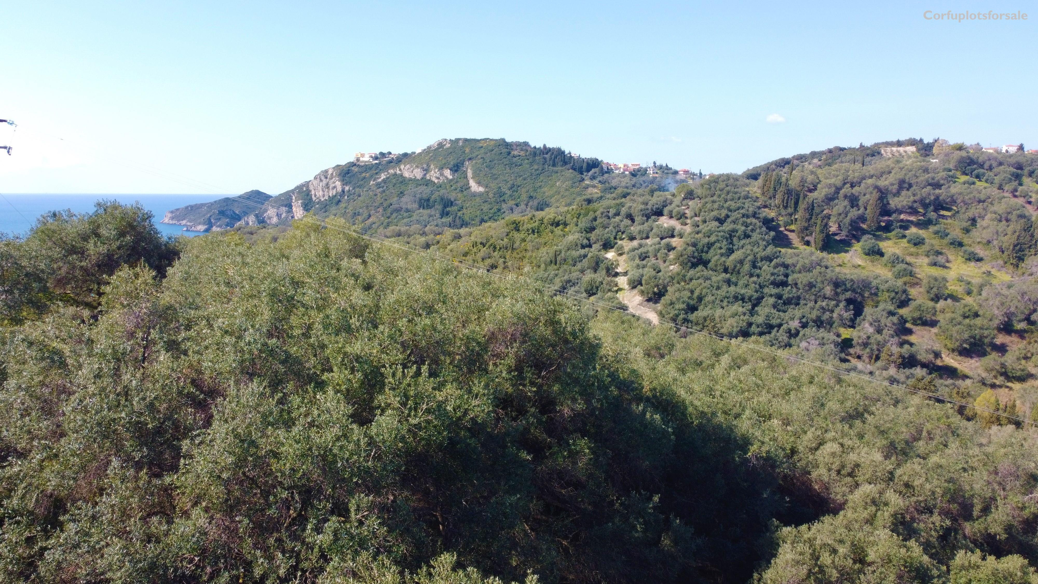 A property 750m from Agios Georgios Pagon beach
