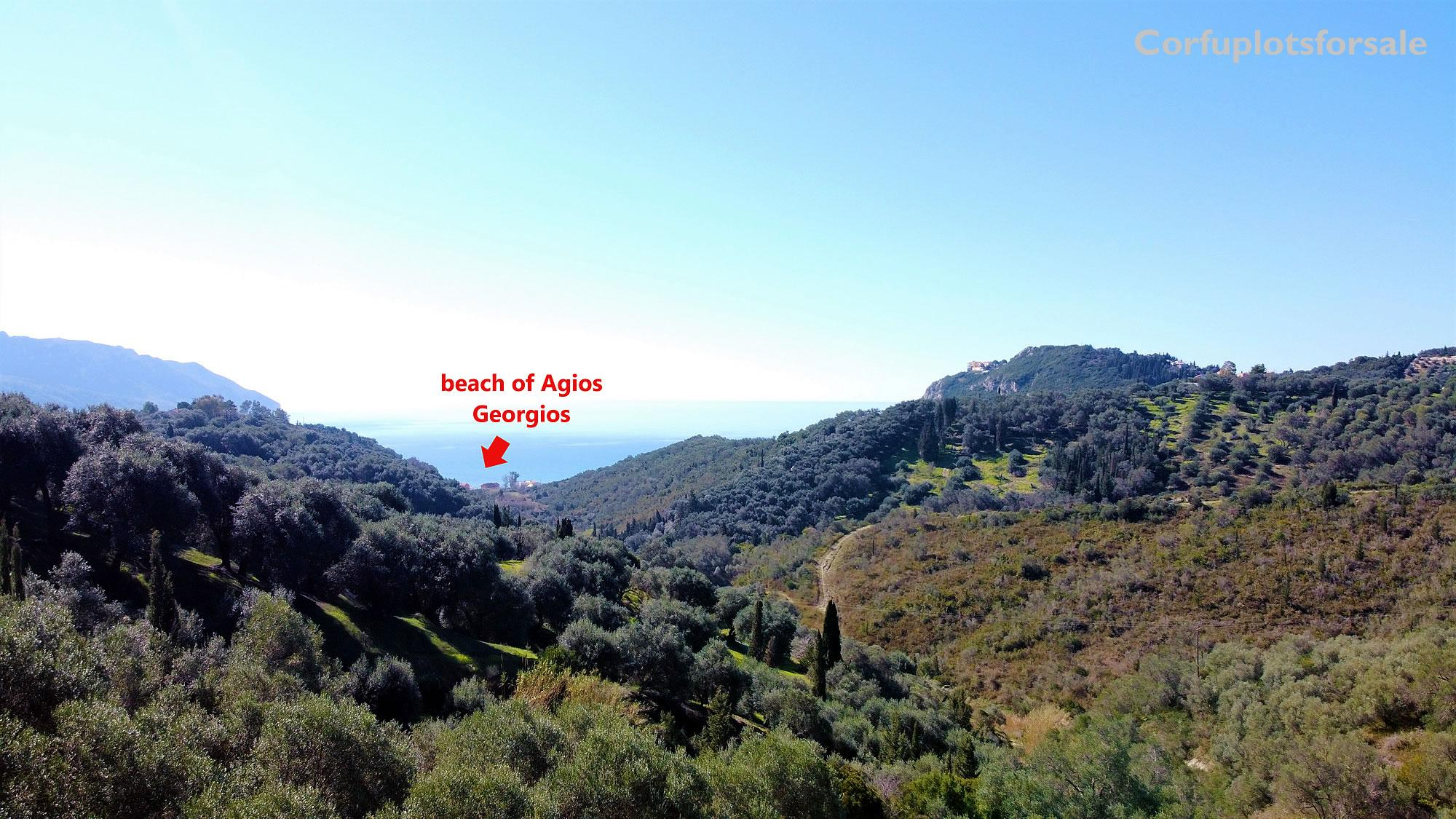Large property with beautiful view and 200 olive trees