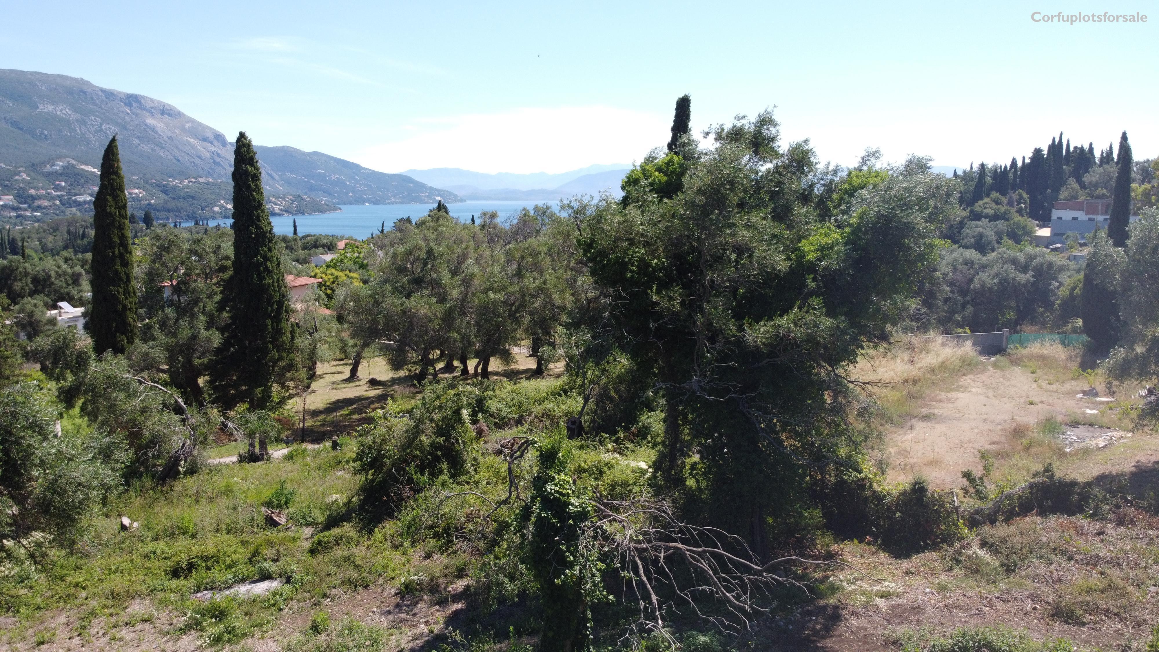 Interesting land in Kato Korakiana